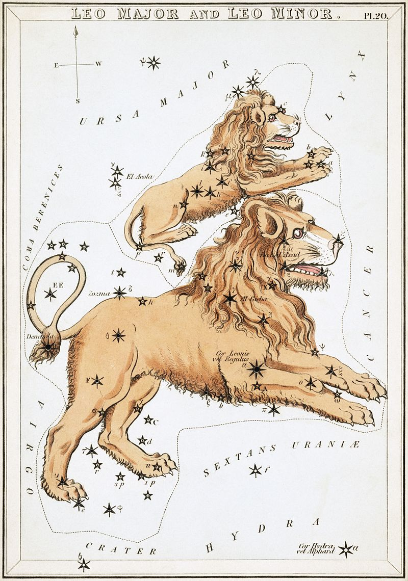 The Sun Moves Into Leo
