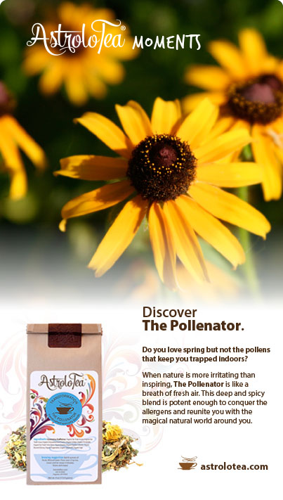 The Pollenator Allergy Tea